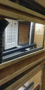 Chicken cages 514 977 7798