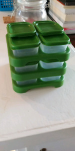 Cube a puree bebe maison - house food mold for baby
