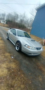 2001 Ford Mustang Daily Driver
