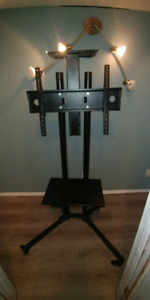 Mobile portable TV Stand / TV Mount