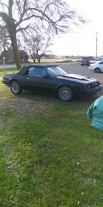 Mustang 5l echan.vus BMW Mercedes