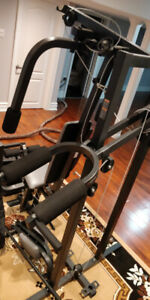 Home Gym Buy Or Sell Exercise Equipment In Mississauga