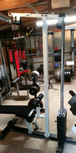 Lat pull Down/Low Row