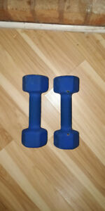 Two 10 lbs dumbbells just for $15