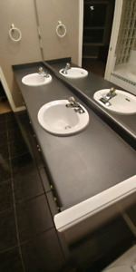 Double sink and countertop
