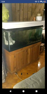 75gal aquarium with everythibg included