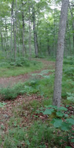 SMRT- Private, treed lot to build your dream home on!