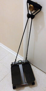 SUNNY Health & Fitness Mini Stepper w/Resistance Bands  $50