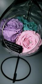 Preserved Rose Globe