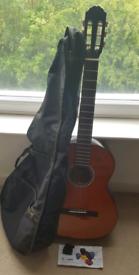 Gewa Pure Basic 4/4 Guitar