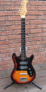 Guitar with Hard Case and Stand