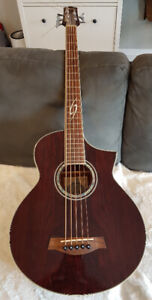 Ibanez 5-String Acoustic Electric Bass - EWB205WNE RARE