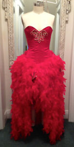 Red Silk Bustier with Matching Feather Skirt