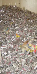 Empty beer cans 2-3 cents each. Over 5 000 available