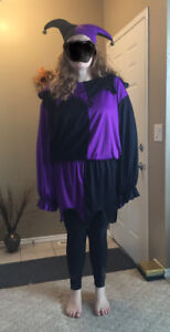 Court Jester halloween costume, adult size