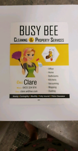 Cleaner....residential and commercial