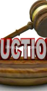 Online auction.... closes Wednesday night at 8pm