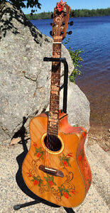 One of a Kind BLUEBERRY acoustic Guitar w Lifetime Warranty
