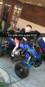 Quad 125cc Tempe Marrickville Area Preview