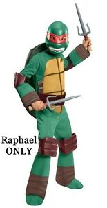 Child Nick TV Show TMNT Teenage Mutant Ninja Turtles Raph Mike Leo / Don Costume