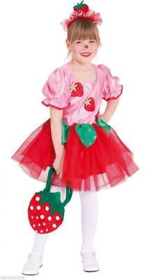 Erdbeer Erdbeermädchen Feen Fee Tinkerbell Kostüm Kleid Elfen Kinder (Tinkerbell Kostüm Mädchen)