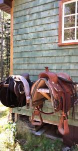 """16"""" English saddle"""