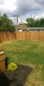 Privacy fence and decks