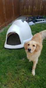 Dog Igloo -XL