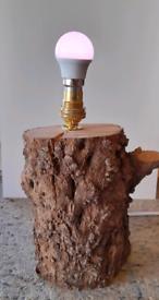 Log light