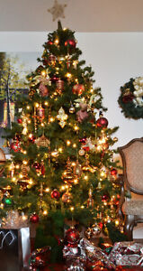Christmas tree Windsor Region Ontario image 1