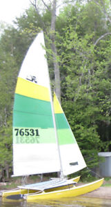 16 foot Hobie with trailer