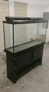 60G Glass Aquarium with Accessories *Like New Condition*