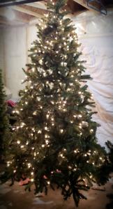 Brand new tree