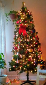 7 ft 803Tips   Chirstmas Tree  with 650 Lights  included