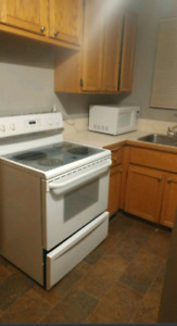 Furnished suite for rent close to university