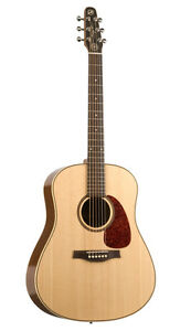 Seagull Maritime SWS SG QI by Godin