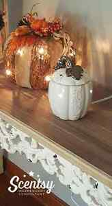 Scentsy Order for October 20th