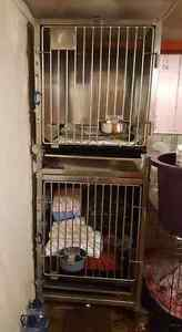 Cages en stainless pour chiens