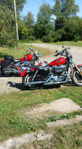 Smoking deal on a 2010 harley Davidson sportster