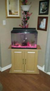 Fish tank & stand