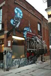 Professional Murals, graffiti, street art, portraits and more