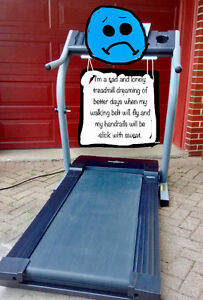Why Get Wet? Exercise indoors.Treadmill Norditrack EXP2000