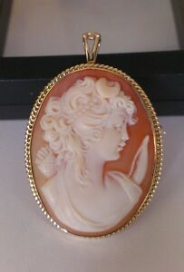 Cameo Pin Brooch Pendant and Earrings