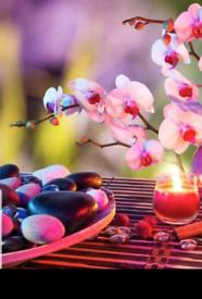 Jasmine Spa - Best Chinese Massage