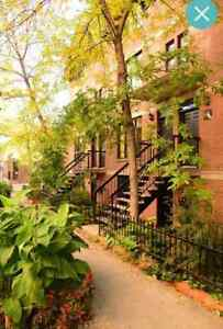 Charming condo - downtown east (Village/Old Mtl)