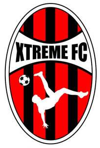 Premier Club Team looking for 2009 Soccer Players (Boys)