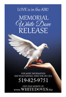 Funeral Release White Doves