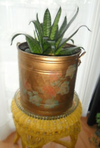 Large Brass Planter with Beautiful Plant