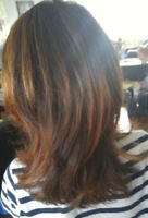 Free hair color. Looking for color model for my licence exam