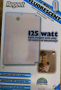 Outdoor energy efficient light, auto ON/OFF, new unused, $25